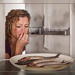 Запах испорченной рыбы